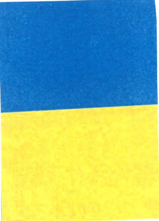 ad21f5247fae1 ces couleurs ou combinaisons de couleurs se présentent effectivement comme  un signe, d une part   et ...